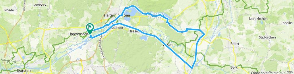 Bosseendorf-Olfen-Rundtour