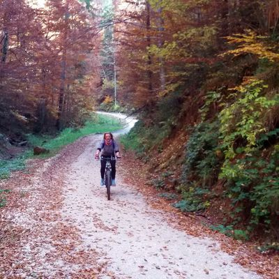 EASY-MEDIUM: Brasov Downhill