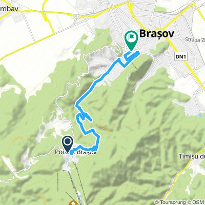EASY-MEDIUM: Brasov Downhill