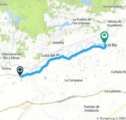 Day 2 Guadajoz to Casa San Jose, Palma del rio