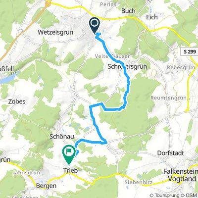 Treuen-Schreiesgrün-Oberlauterbach-Trieb