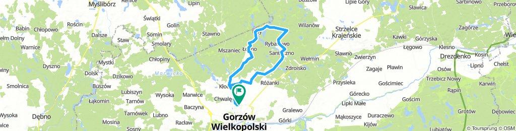 AJL - Jezioro Przyłęg