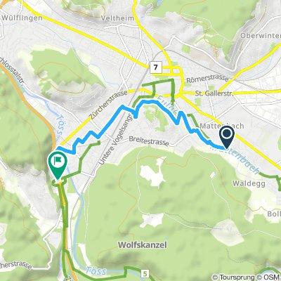 Route im Schneckentempo in Winterthur
