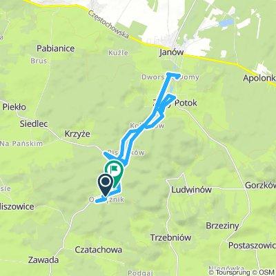 Jura Krakowsko-Częstochowska - Ostrężnik - Złoty Potok