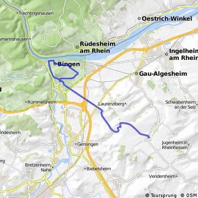 Über den Rochusberg nach Ober-Hilbersheim
