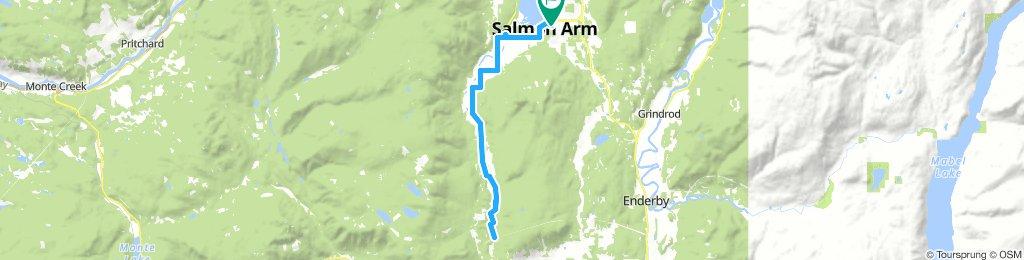 Salmon Arm loop