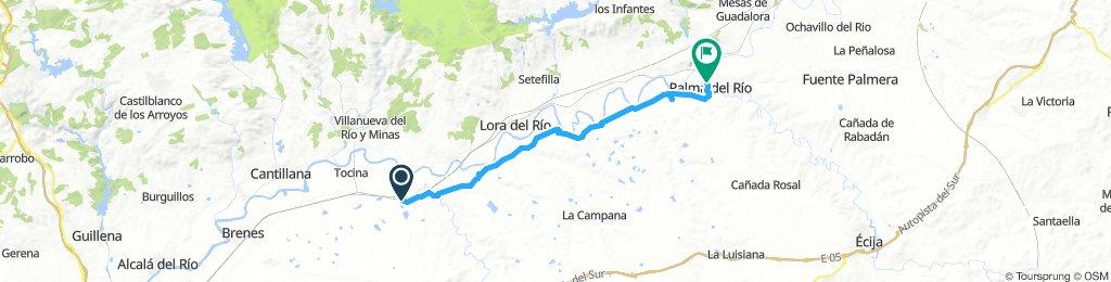 Alcolea del Río Cycling