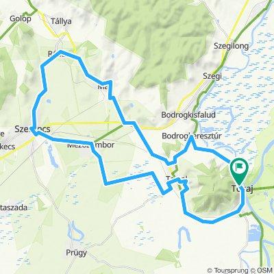 Tokaj - Borvidéki biciklitúra