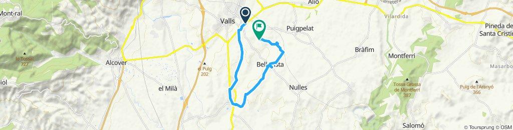 Valls>Vallmoll>Bellavista