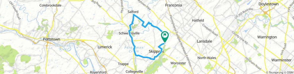 Salfords Loop