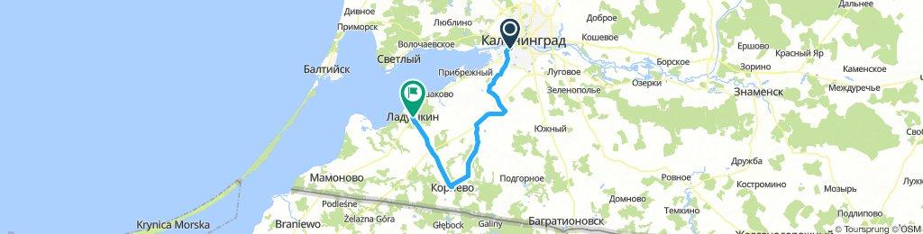 28: от школы до Ладушкина через Корнево