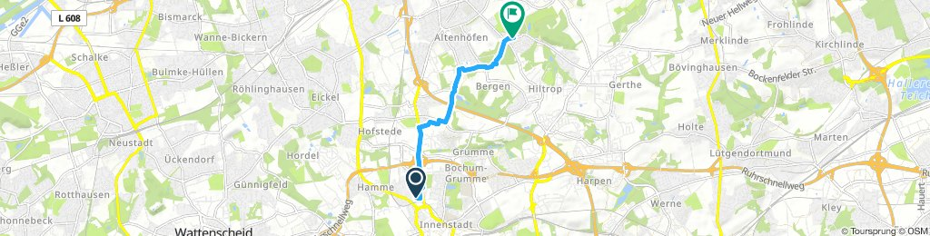 Bochum Zentrum- Herne Sodingen