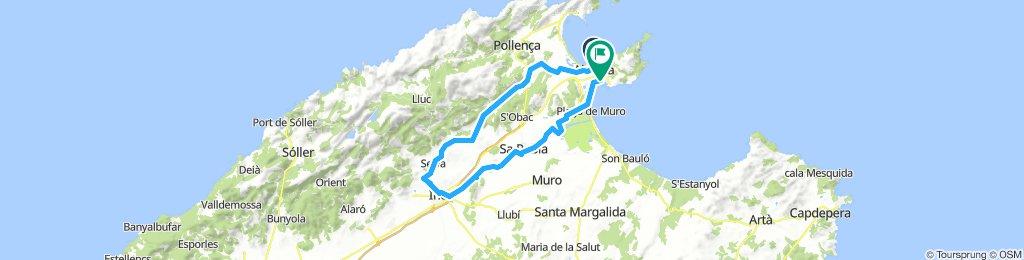 Alcudia - Selva - Inka