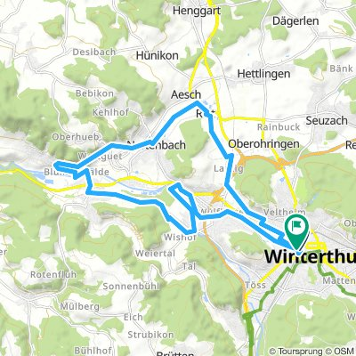 winterthur flat