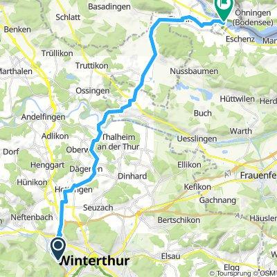 Winti Stein am Rhein