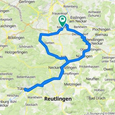 Metric Ton to Tübingen.