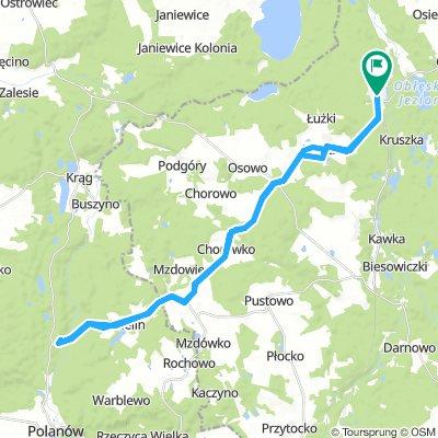 Dupa warcińsko-polanowska leśna