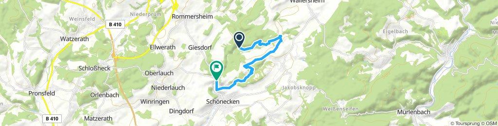 Moderate Route in Schönecken