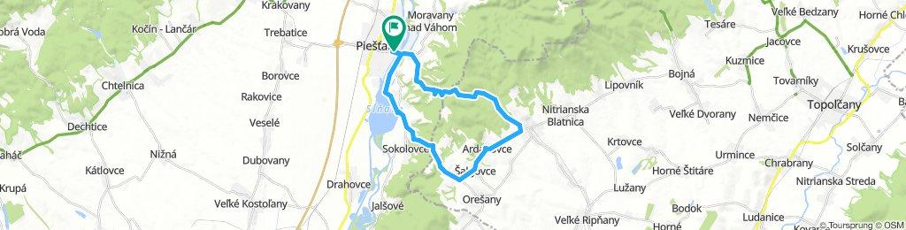 Piešťany - Svrbice - Radošina