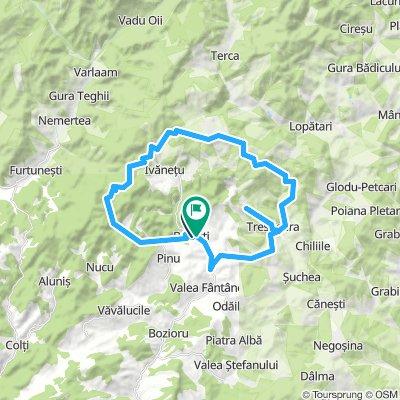 Braesti - Ruginoasa - Baleanca - Mocearu - Budesti - Braesti