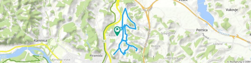 Košaki tour: V Zavoju - Stolni vrh - Ribičija - Anderlič - Zg.Košaki - V Zavoju