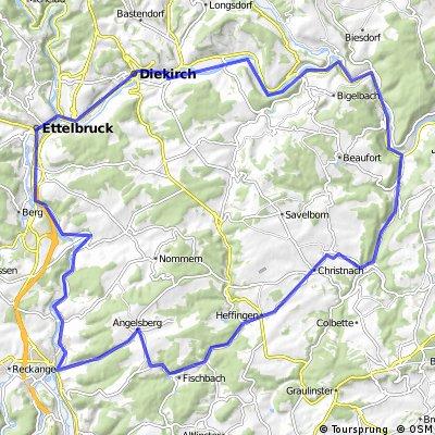 fischbach1