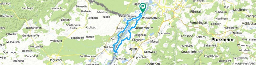 Neuburg am Rhein - Ründchen Sauer - Sauermündung 2019
