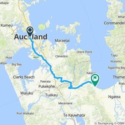 NZ1 Auckland to Miranda