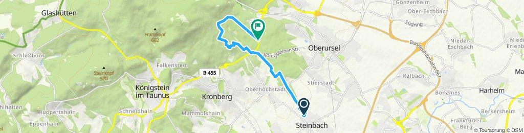 Langsame Fahrt in Steinbach (Taunus)