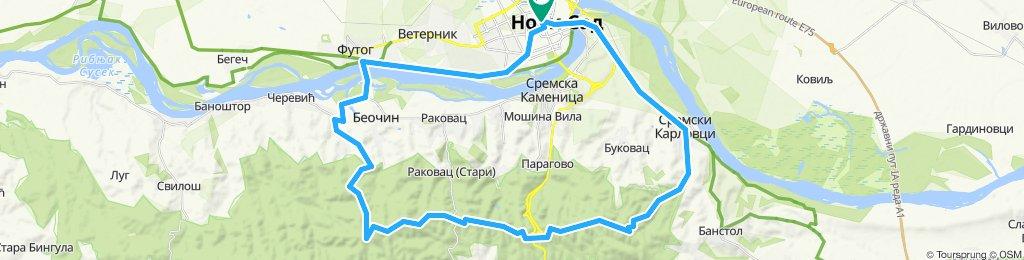 Subota 11.05. Karlovci - Strazilovo - Zmajevac -Futog