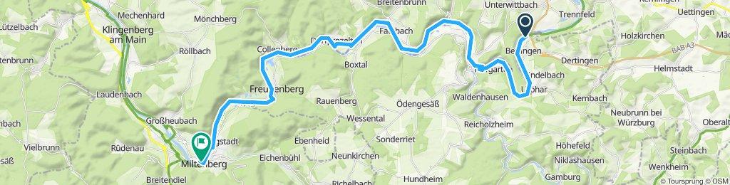 10a11 Wertheim - Miltenberg Mainwiese