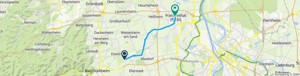 Gemütliche Route in Frankenthal (Pfalz)