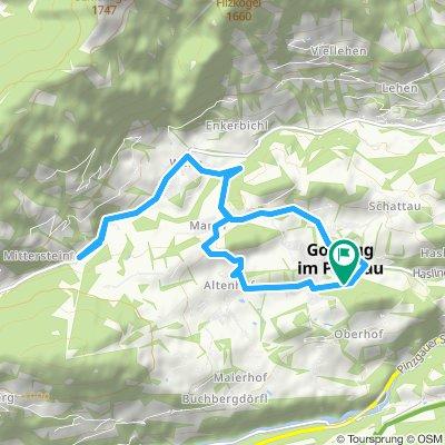 VM-Triathlon Goldegger See