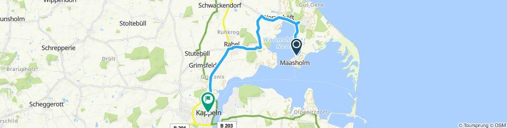 Maasholm-Kappeln