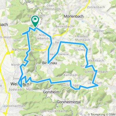35km NL-Hirschkopf-Weinheim-Wachenburg-Lehrbach-Rohrbach-Reisen-Birkenau-NL