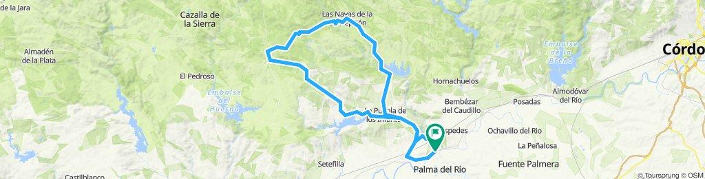 Palma-La Puebla-Constantina-Las Navas-La Puebla-Palma