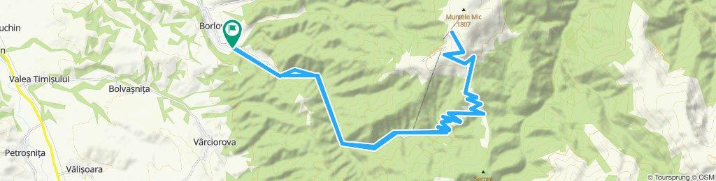 Borlova-Muntele Mic