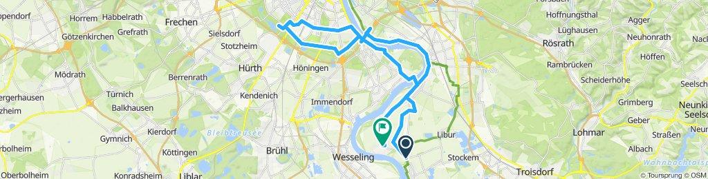 von Lülsdorf zum Geissbock