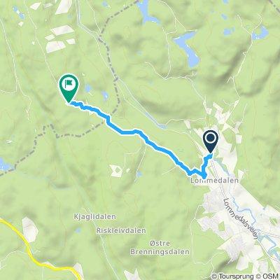 Den bergenske kongevei over Krokskogen (del 1)