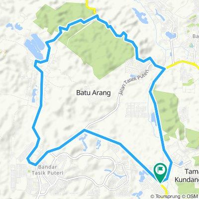 Bt Arang