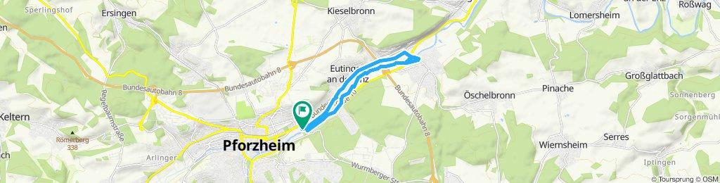 Enzauerpark, Niefern,Eutingen und zurück zum Enzauenpark