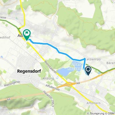 Einfache Fahrt in Adlikon bei Regensdorf