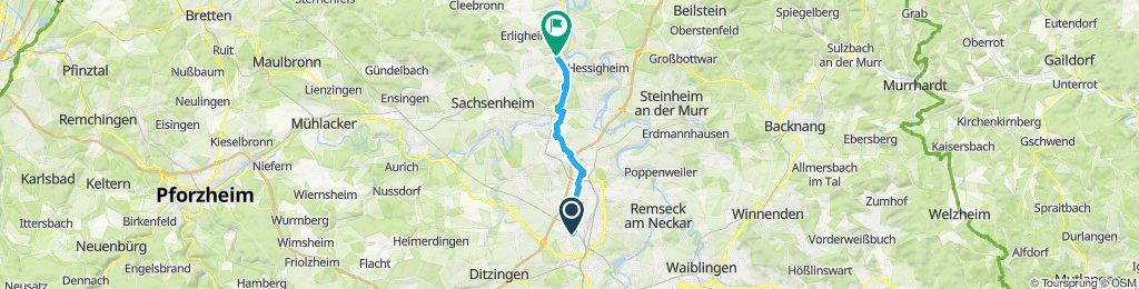 Moderate Route in Besigheim