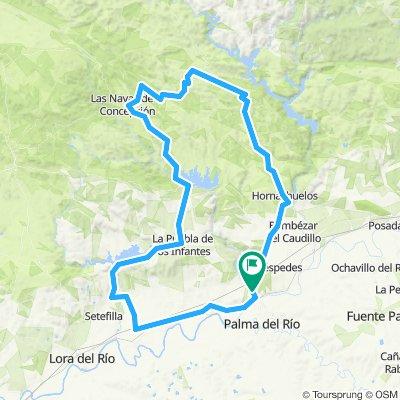 Palma-Setefilla-Jose Toran-La Puebla-Las Navas-San Calixto-Hornachuelos-Palma