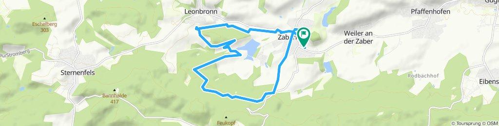 Alpaca Tour Zaberfeld