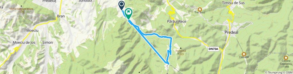 Snail-like route in Sânpetru. 2