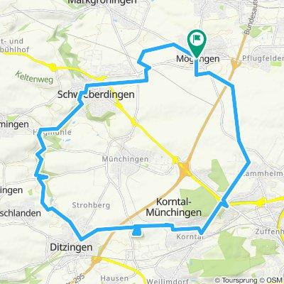 P2019-J3c_Möglingen Korntal-Münchingen Mögl. 30 km 300 m
