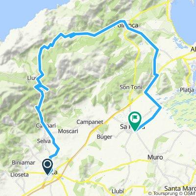 Mallorca: Inca-coll de sa Batalla-cim des Castellot-Pollença-Sa Pobla