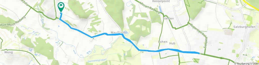 Gerade Fahrt in Saaldorf-Surheim