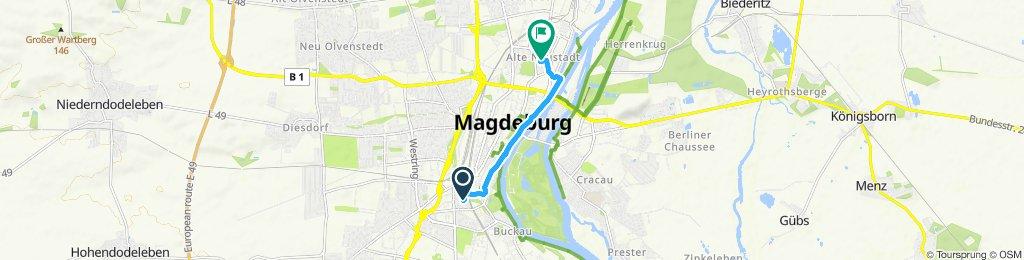 Einfache Fahrt in Magdeburg